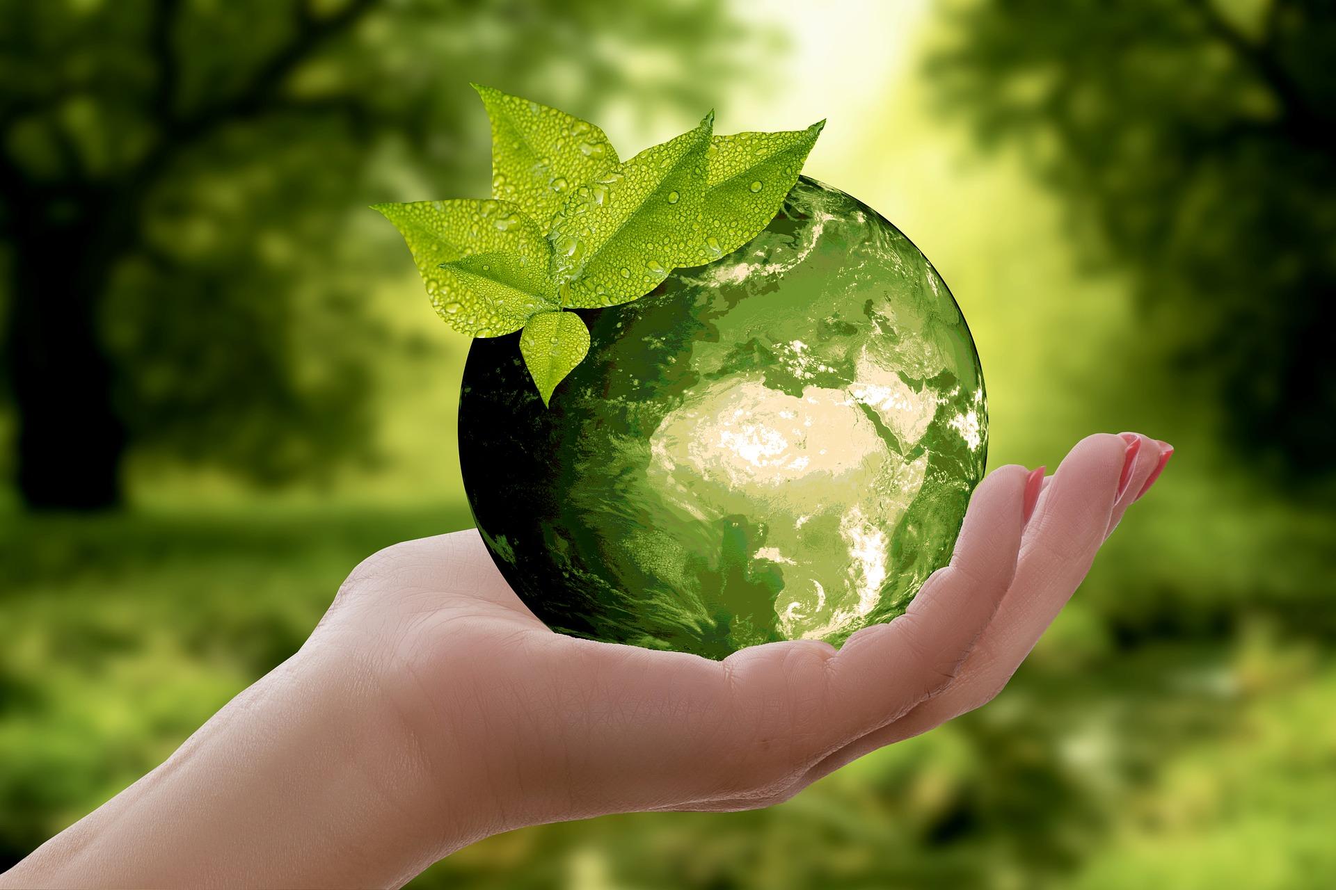 手心捧地球,意指環境保護從你我做起