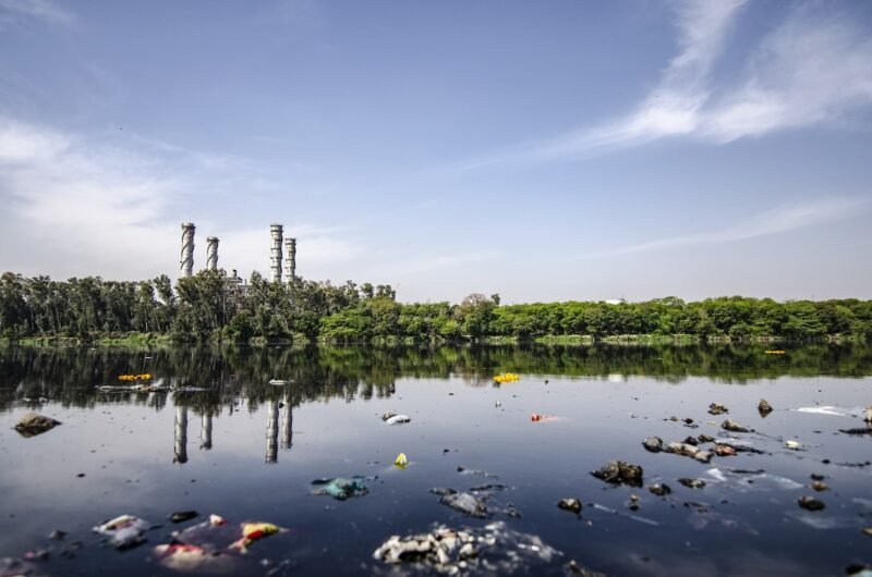 海洋垃圾種類繁多並多以塑膠垃圾為大宗