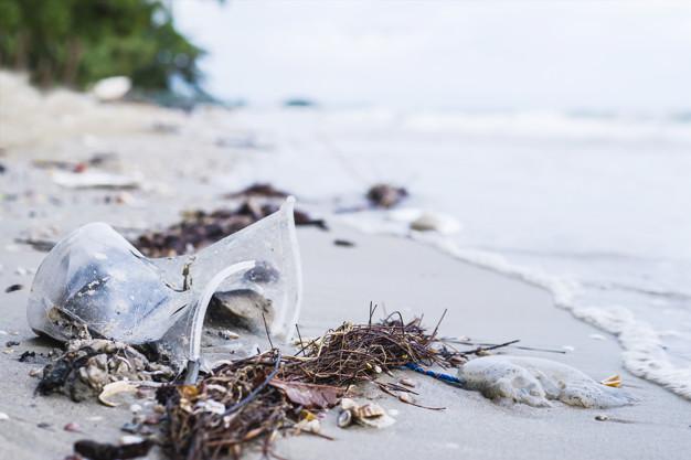 海洋垃圾有多少?海洋垃圾示意圖